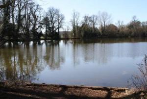 Kirtlington-Manor-Lake